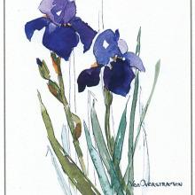 A beautiful watercolor by Alice Van Overstraeten
