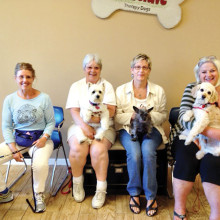 Pictured - row one are Barbara Lubsen with Boo, Marie Johnson with Rosie, Sue Fernandez with Molly and Lenys Walden with Bailey; not pictured is Bud Tasch with Oggie