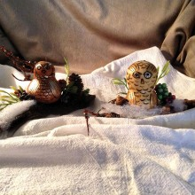 Two rare Christmas owls caught by artist Phyllis Mills. Phyllis is a prolific artist living here in Sun Lakes and daily labors diligently to please her followers with her timeless gourd art.