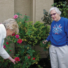Diane Beatty and Nancy Sjolin with rose bushes.