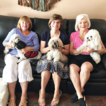 Pictured (left to right) are Alice Baldwin with Allie and Luci Lui, Karen O'Reilly with Piper and Phyllis Johnson with Zoey. Julie Mooney who is taking the picture, is the owner of Allie.