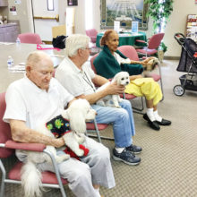 Pictured front to back: Roy holding Louie Louie, Dennis holding Zoey and Irene holding Piper.