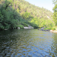 This picture was taken at the Black River Crossing on the Black River which is located a couple of miles above the confluence of the Salt and Black Rivers. Fishing at this location also yielded us a few dozen Smallmouth Bass and Red Ear Perch.