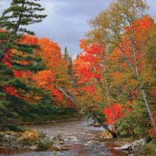 Carrabassett River in Carrabassett Valley, Maine by John Livoti