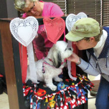 The kissing booth at the Valentine's event