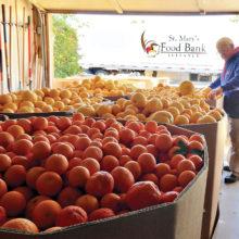 The Sun Lakes Citrus Sharers store donated fruit.