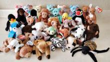 Beanie Babies donation
