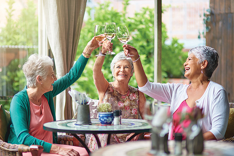 Shot of a group of elderly friends having drinks together