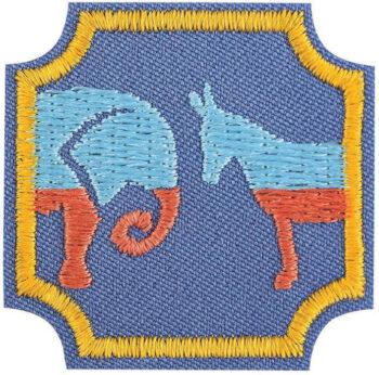 Ambassador Democracy Badge
