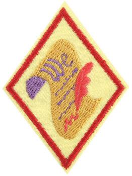 Cadette Democracy Badge